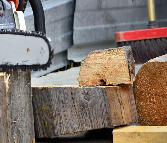 Abattre soi-même un arbre à Montpellier